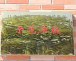 江西省中小学实施素质教育示范学校